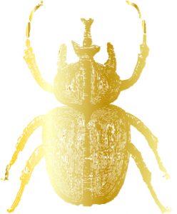 ih-beetle